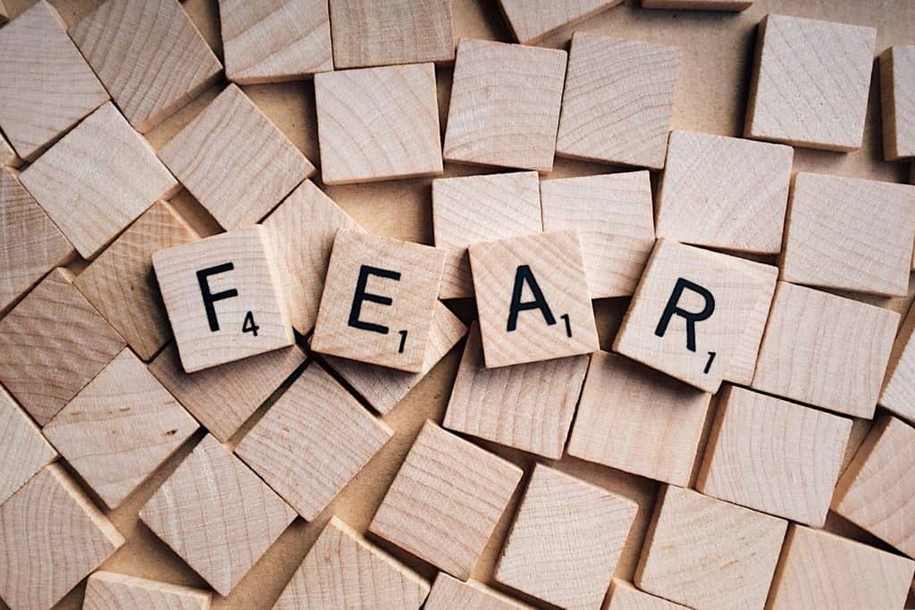 Decide to be Fearless: 4 Ways to Conquer Your Fears 2