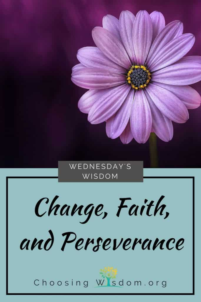 Change, Faith, and Perseverance 3