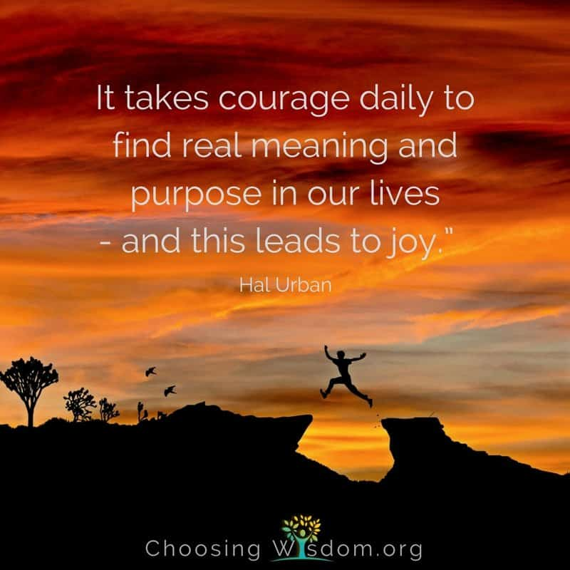 It takes courage daily to find real meaning and purpose in our lives and this leads to joy.