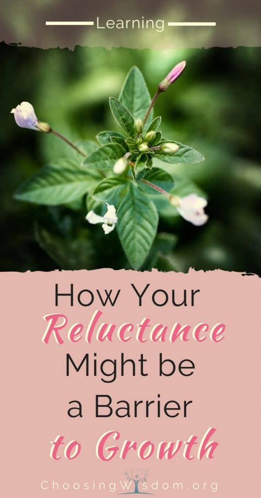 How Your Reluctance Might be a Barrier to Growth 4