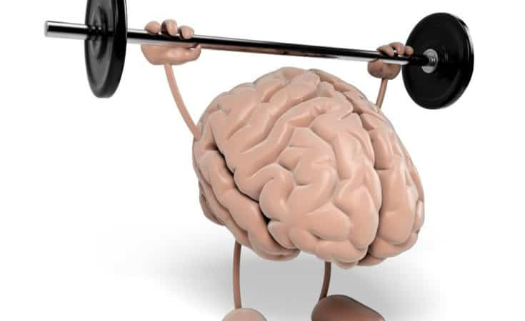 How to improve memory loss and brain function