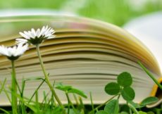9 Books for Your Summer Reading List 3
