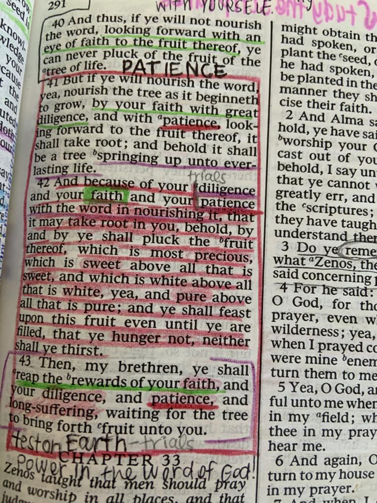 Alma 32:41